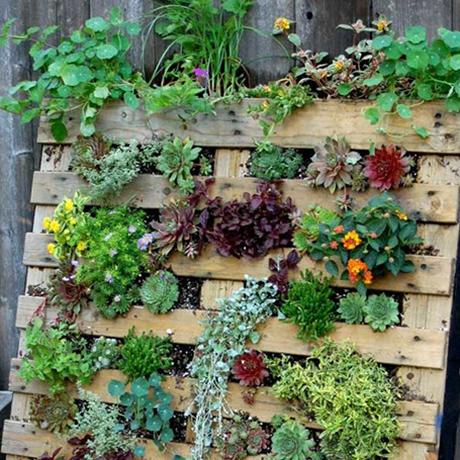 jardineria palets 460x460